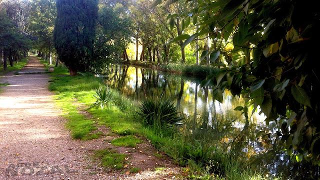 Ramal del Canal de Castilla, 2013 Abbé Nozal
