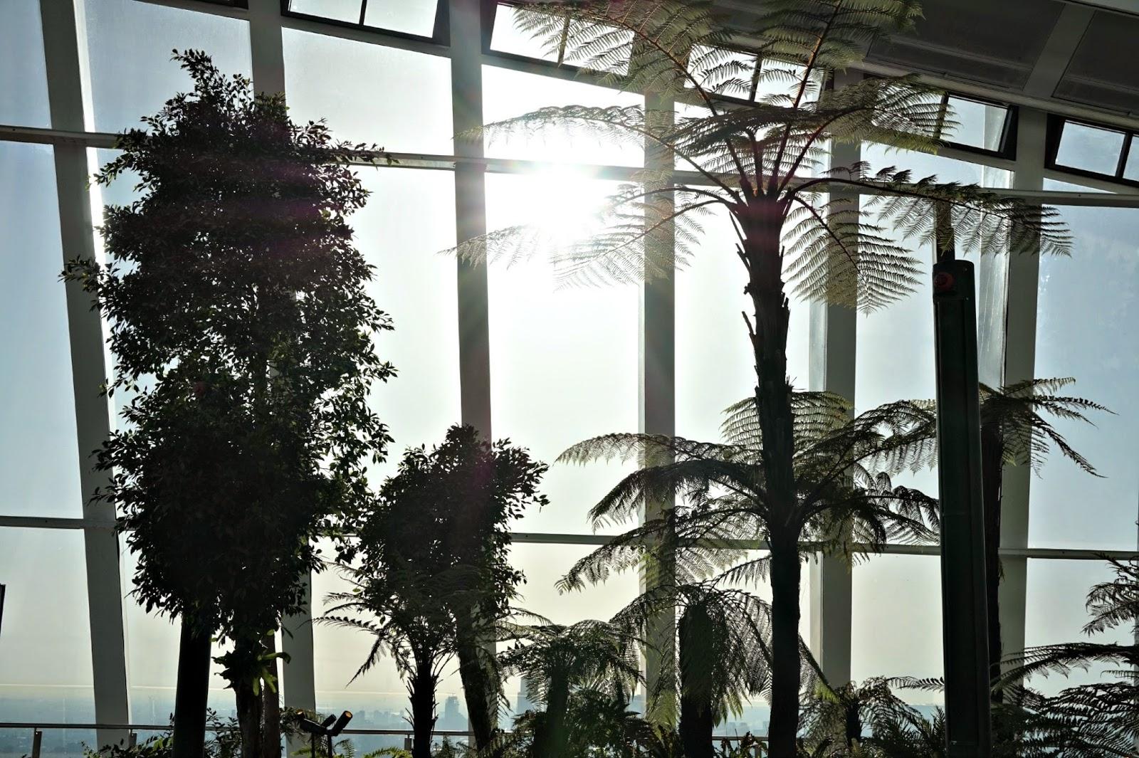 Sunrise Skygarden