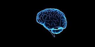 Cara Menghapus Memori Buruk di Otak
