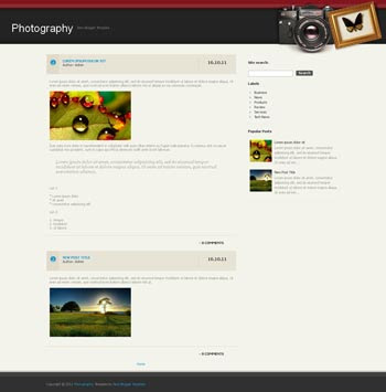 Photography (II) blog template. download blogger template for photography blogs