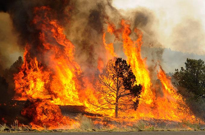 Interior Plains Natural Disasters