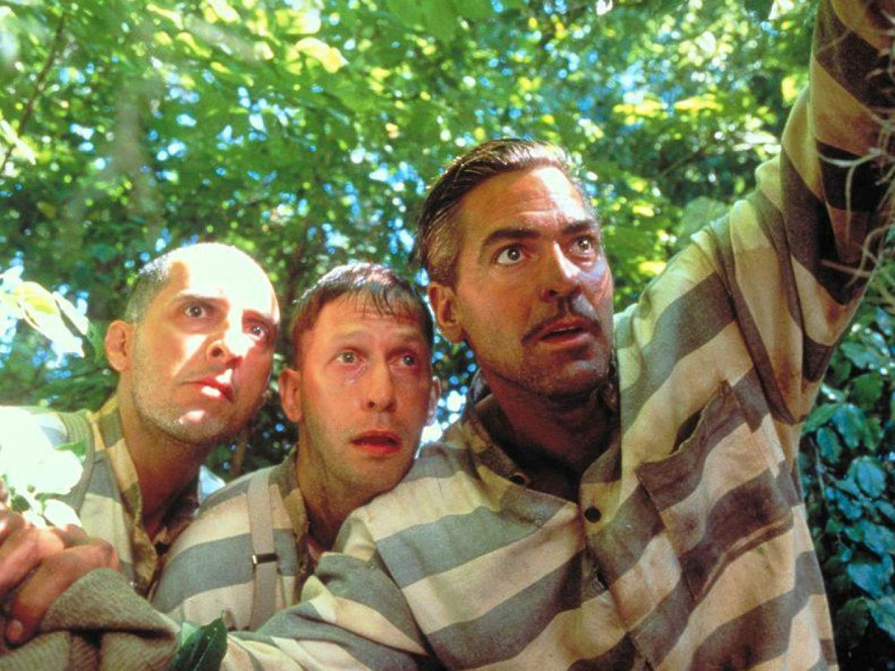 PeteBACK: Film•Peteback: O Brother, where art thou?