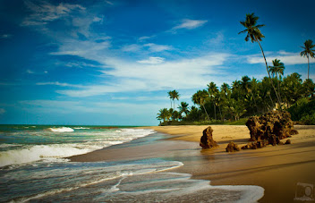 Uma das 7 maravilhas de Conde praia de Tabatinga