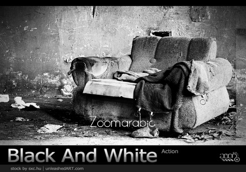 Download Black and White Action Photoshop Free