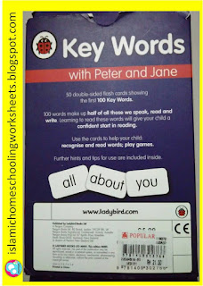 Flash Cards 100 Key Words in English by Ladybird