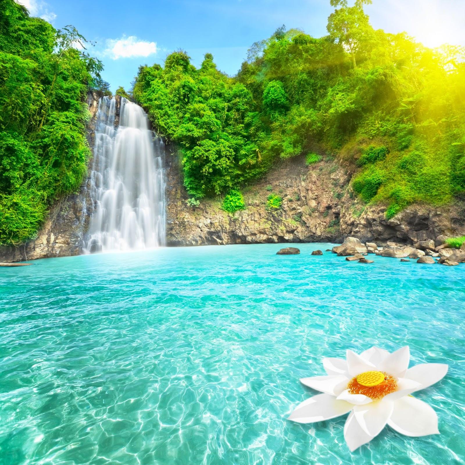 cascadas de agua virtual