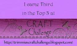 Winnaar top 3 , challenge 188