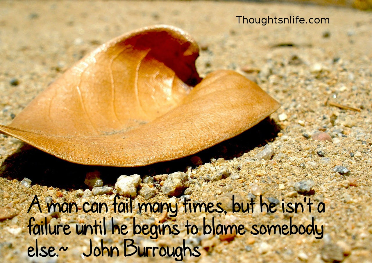 Thoughtsnlife.com: A man can fail many times, but he isn't a failure until he begins to blame somebody else.  ~   John Burroughs