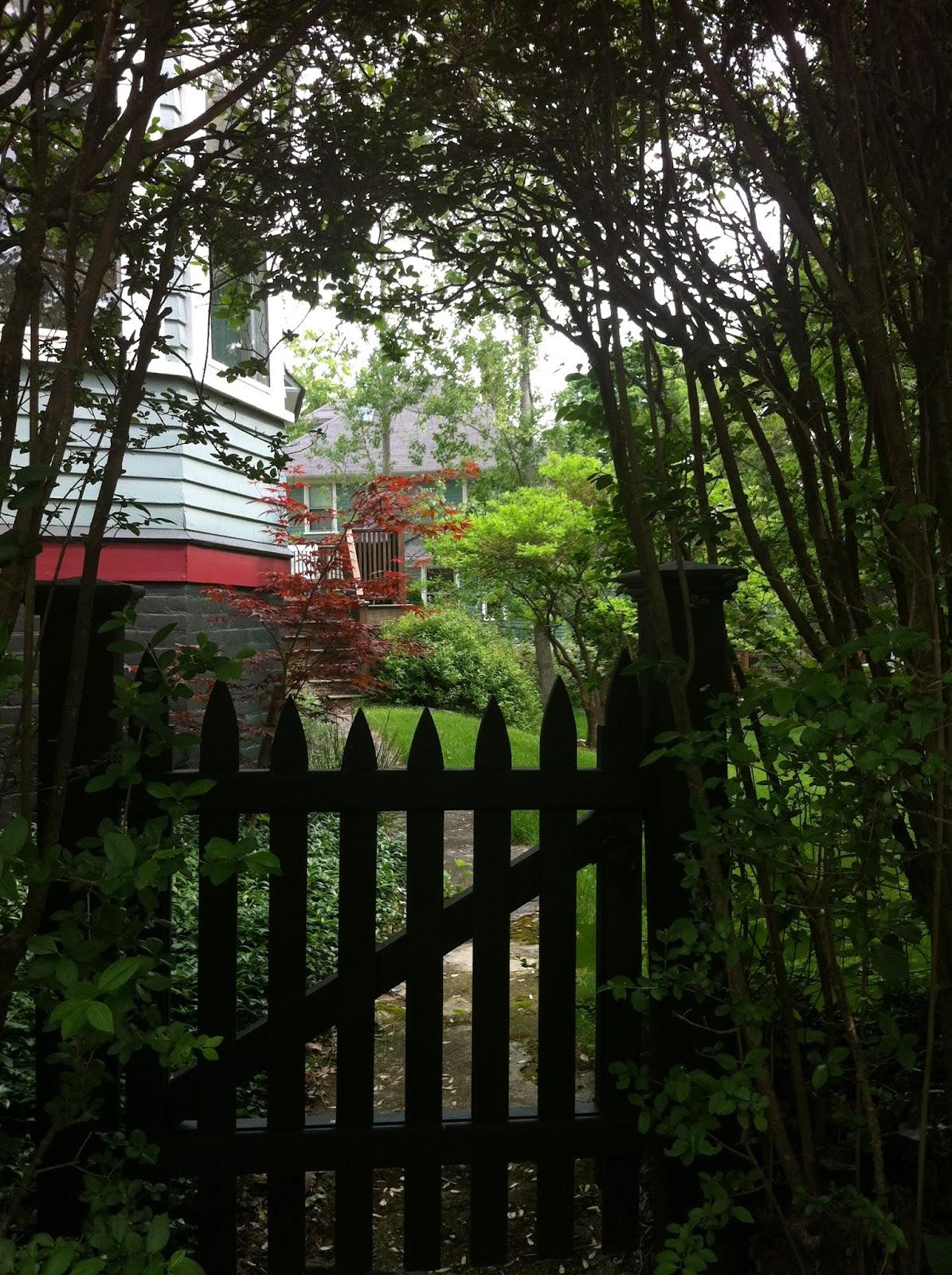 Garden gate under trees