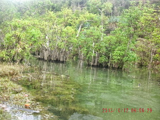 Danau Air Payau Di Pantai Kunir