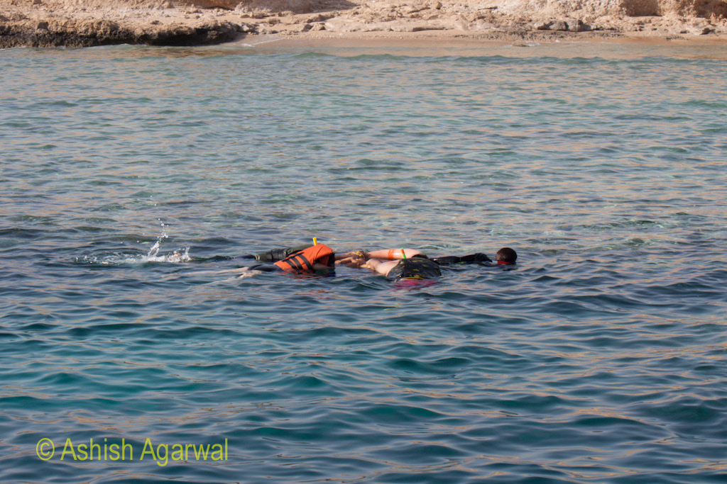 Tourists wearing snorkeling equipment face down in the waters near Sharm el Sheikh in Egypt