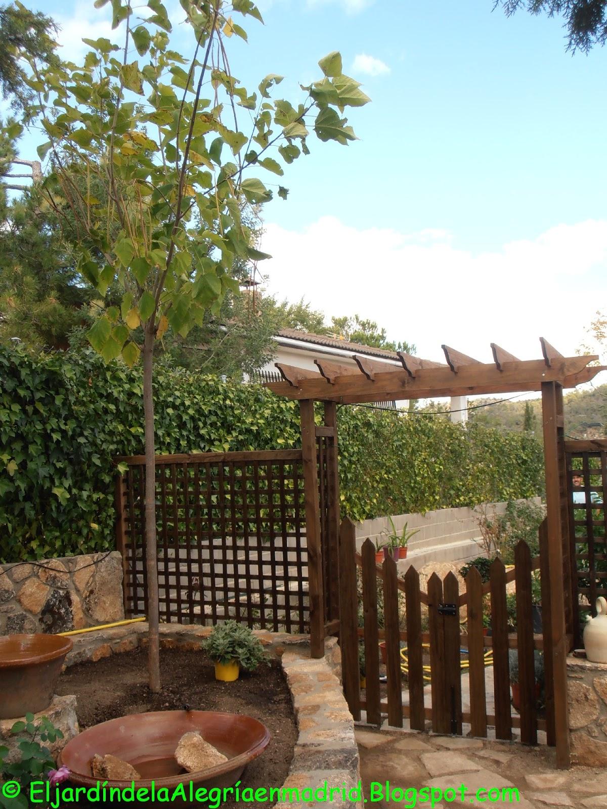 El jard n de la alegr a uno de los trabajos m s bonitos plantar un rbol en el jard n - Arboles bonitos para jardin ...