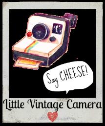Little Vintage Camera