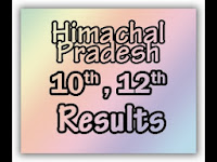 HP Board Supplementary Results 2013