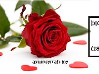 segmen: bloglist istimewa ayuinsyirah tahun 2013