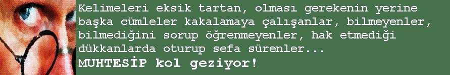 MUHTESİP