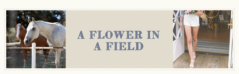 A Flower In A Field