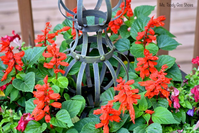 Pretty Container Gardens...As Easy as 1-2-3   Ms. Toody Goo Shoes