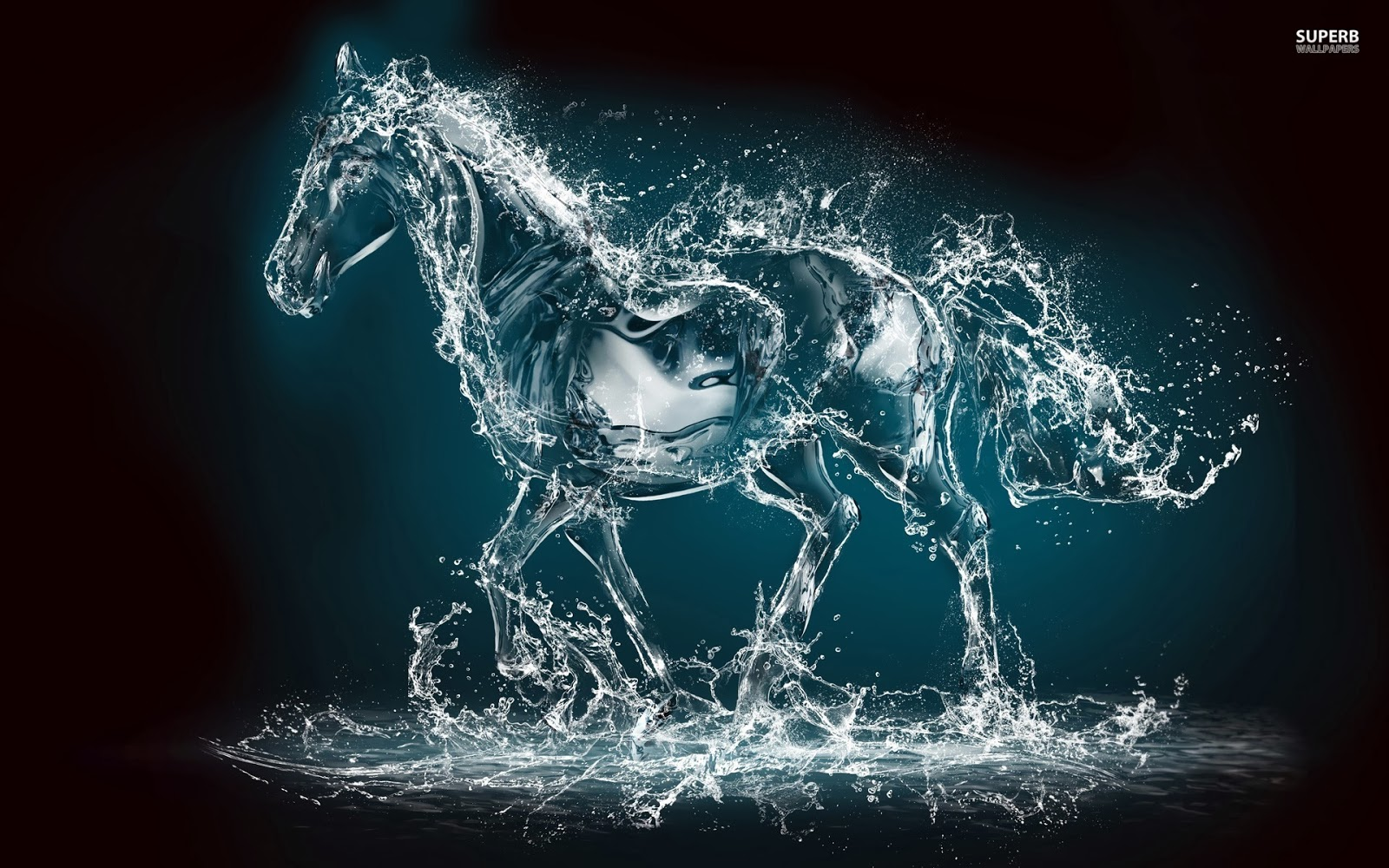 Water horse wallpaper - photo#1