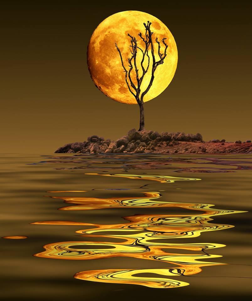 Cykl Księżyca