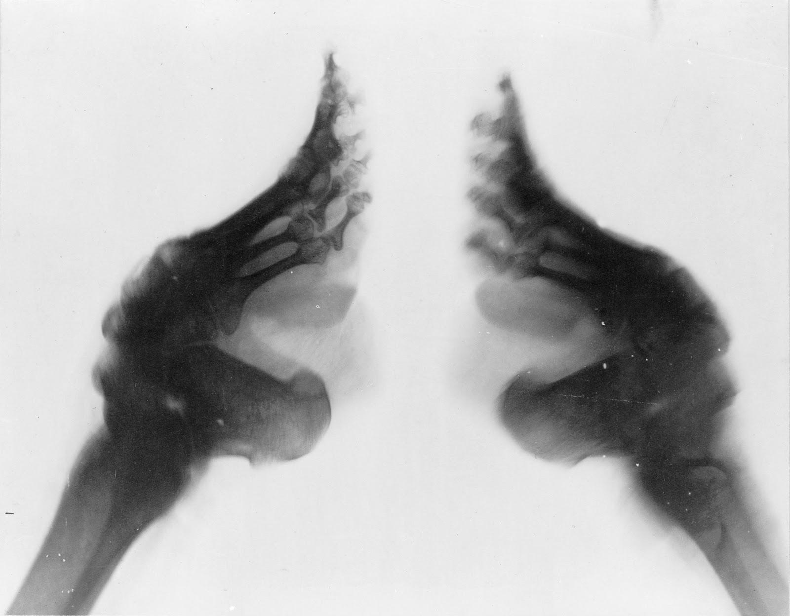 Просмотреть feet challenge рассказы 1 фотография