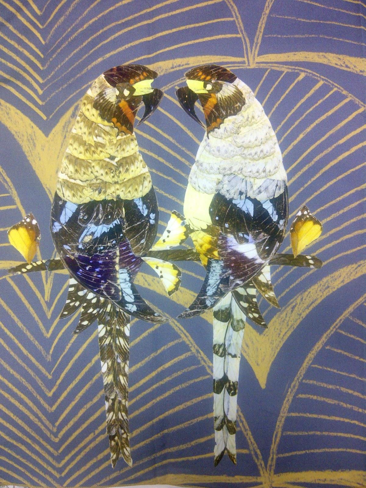 http://1.bp.blogspot.com/-CVTqVSdxd3g/TrnUYluDgWI/AAAAAAAAAfs/3FDKGrmHP28/s1600/Soleil+Bleu+parrots.jpg