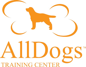 AllDogs Training Center Educazione Cinofila