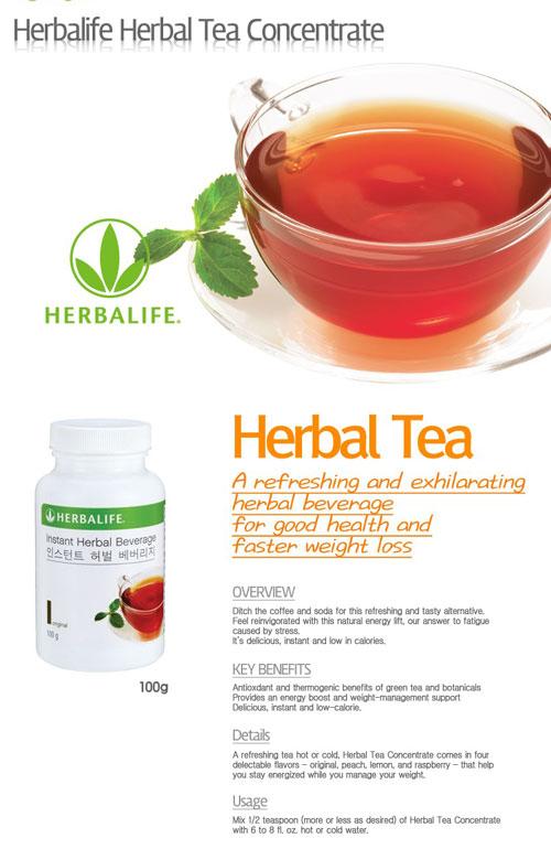 Manfaat Herbal Tea Concentrate | Diet Sehat Tanpa Lapar
