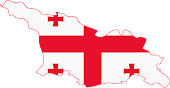 SUPPORT GEORGIA