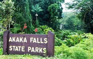 Hawaii, Akaka Falls State Park, Hualalai volcano