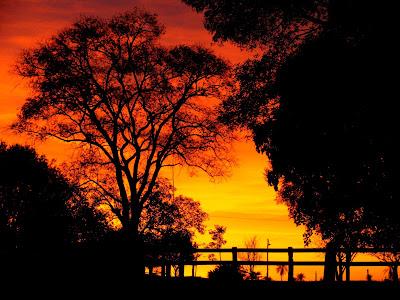 Cores belas do por do sol no Pantanal