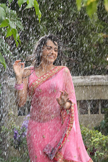 Trisha-Krishnan-in-wet-saree-hot-stills-from-Aranmanai2
