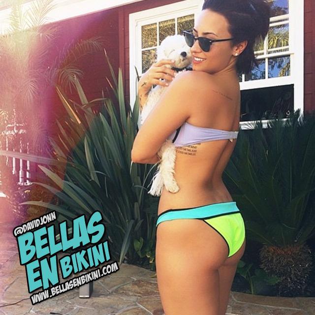 Nueva foto de Demi Lovato en bikini revoluciona