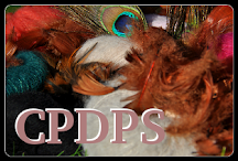 CPDPS