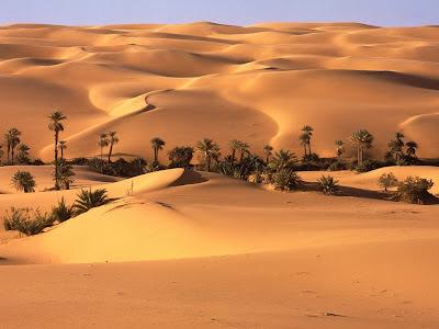 pobreza, desiertos, Africa, cultivos indiscriminados, como se forman los desiertos
