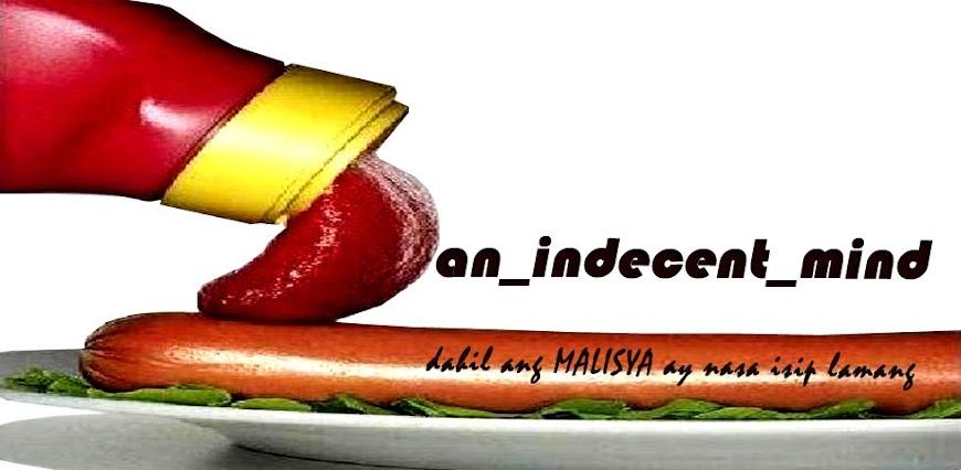 an_indecent_mind