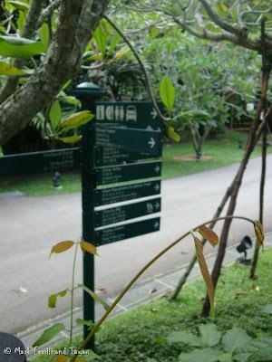 Singapore Botanic Gardens Photo 4
