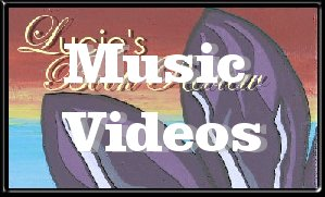 Enjoy These Music Videos