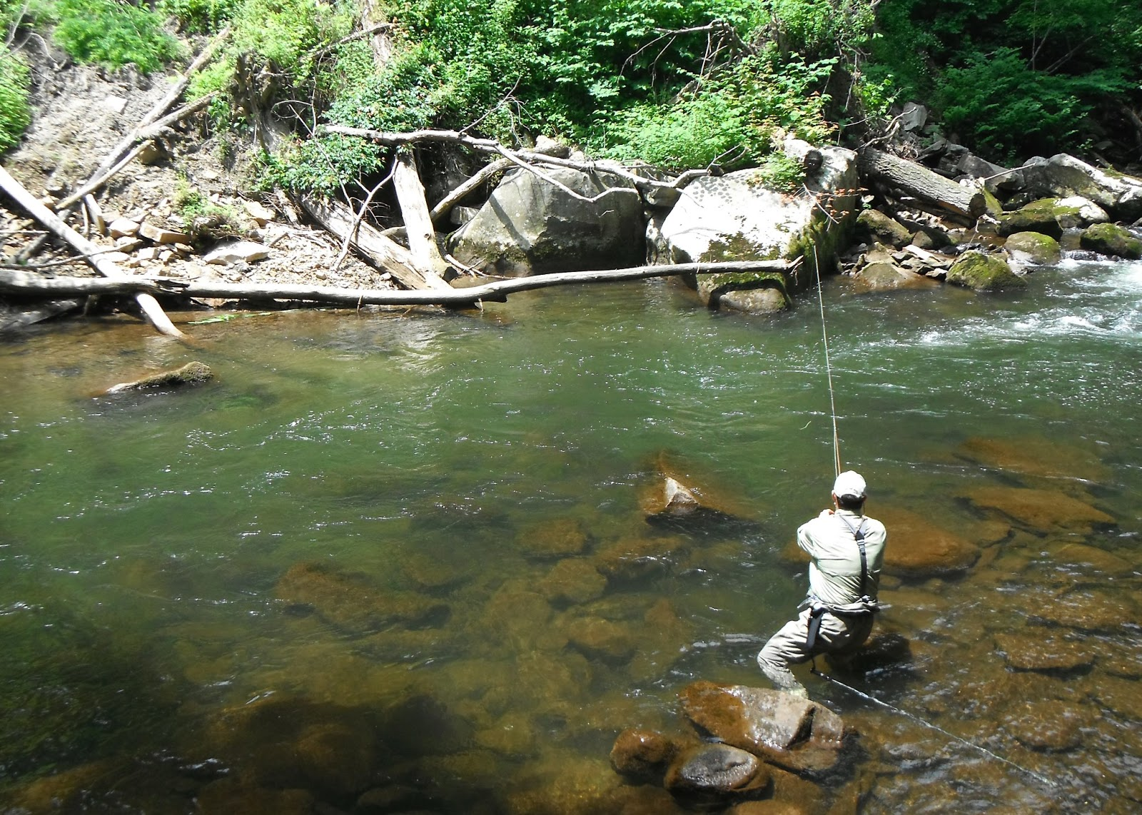 Western Maryland Fly Fishing Bug Soup On The Savage Tailwater