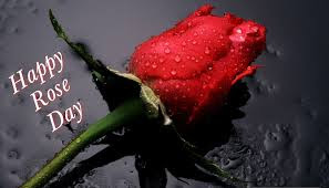 Happy-Rose-Day-HD-Wallpapers-2