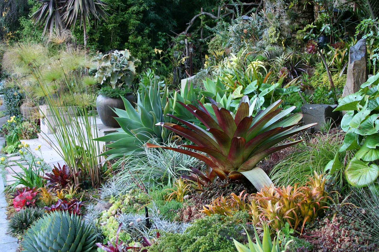 Garden Bloggers Fling San Francisco Fling Preliminary