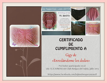 Certificado del 2do Tejejuntas