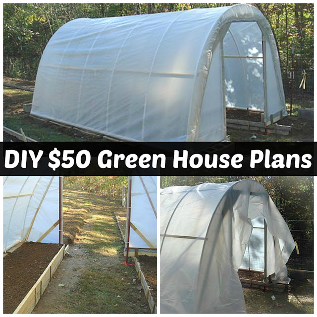How To Build A 50 Dollar Greenhouse Diy Plans Handy
