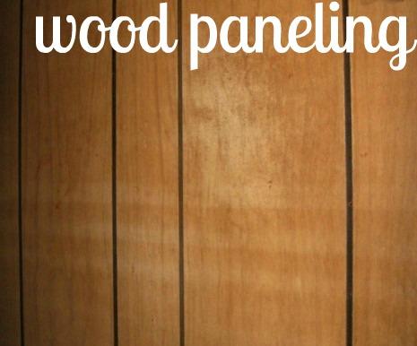 The Hillbilly Princess Diaries Drywall Vs Paneling