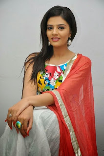 Actress Sree Mukhi Pictures in Salwar Kameez at Prema Ishq Kadhal Audio Success Meet Function  0048.jpg
