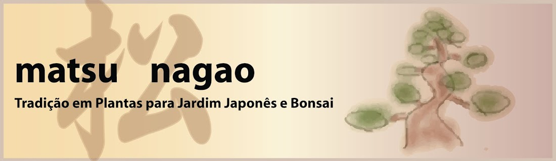 Matsu Nagao