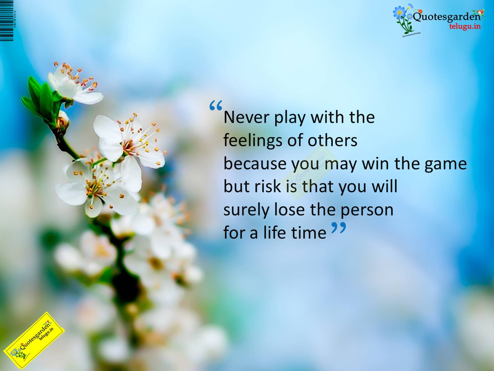 Person Beautiful Life Inspirational Quotes Picturesms Www