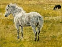 study for gate & field: pony