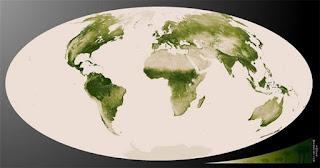 IMAGENES DE LOS BOSQUES DEL PLANETA TIERRA 2013 mapa verde de la tierra