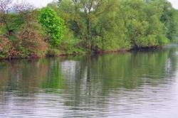 Stetiger Fluss der Ruhe...